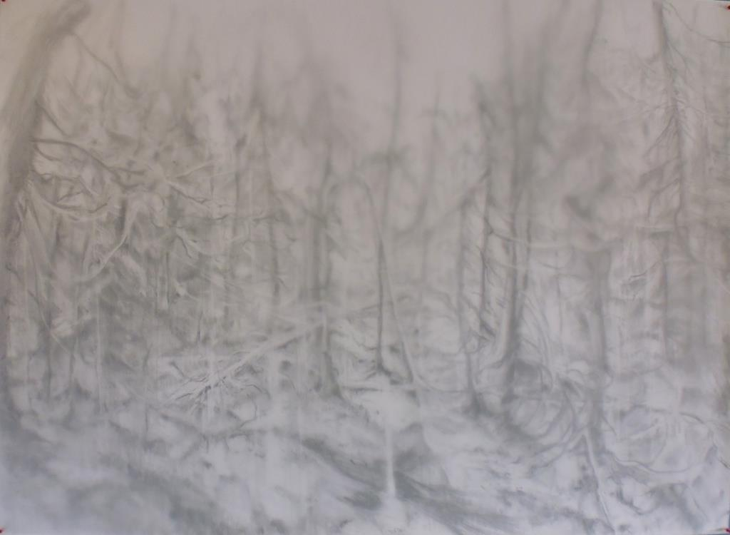 carita-savolainen-unknown-woods-she-was-here-pencil-on-paper-veil-110cm-x-150cm-2017