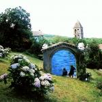 carita-savolainen-garden-portrait-muotokuva-puutarhasta-portrait-du-jardin-saint-gervais-sur-mar-france-copie