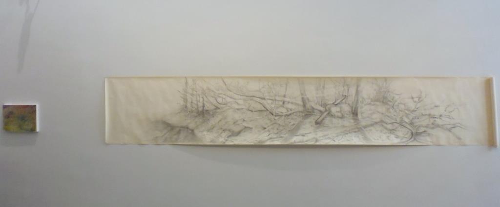 carita-savolainen-broken-landscape-70cm-x-470cm-2016
