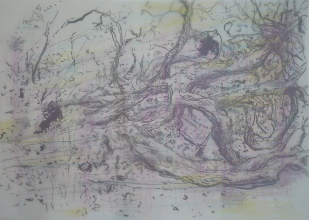 carita-savolainen-outre-chene-1-drawing-mixed-media-30cm-x-21cm-2019