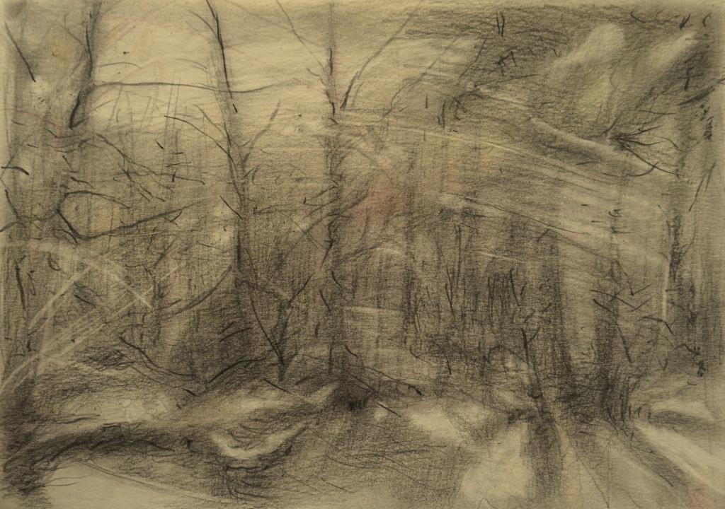 carita-savolainen-the-song-of-the-trees-drawing-21cm-x-30cm-2019