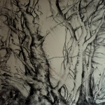 carita-savolainen-unknown-trees-i-charcoal-on-paper-110cm-x-150cm-2017
